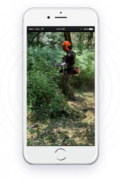 mobile-f.silvestre